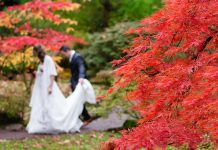 Autumn Wedding Trends for Brides