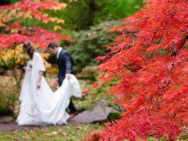 Autumn Wedding Trends for Brides